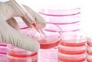 ذخیره سازی خون بند ناف نوزادن در سبزوار با اقبال عمومی مواجه شد